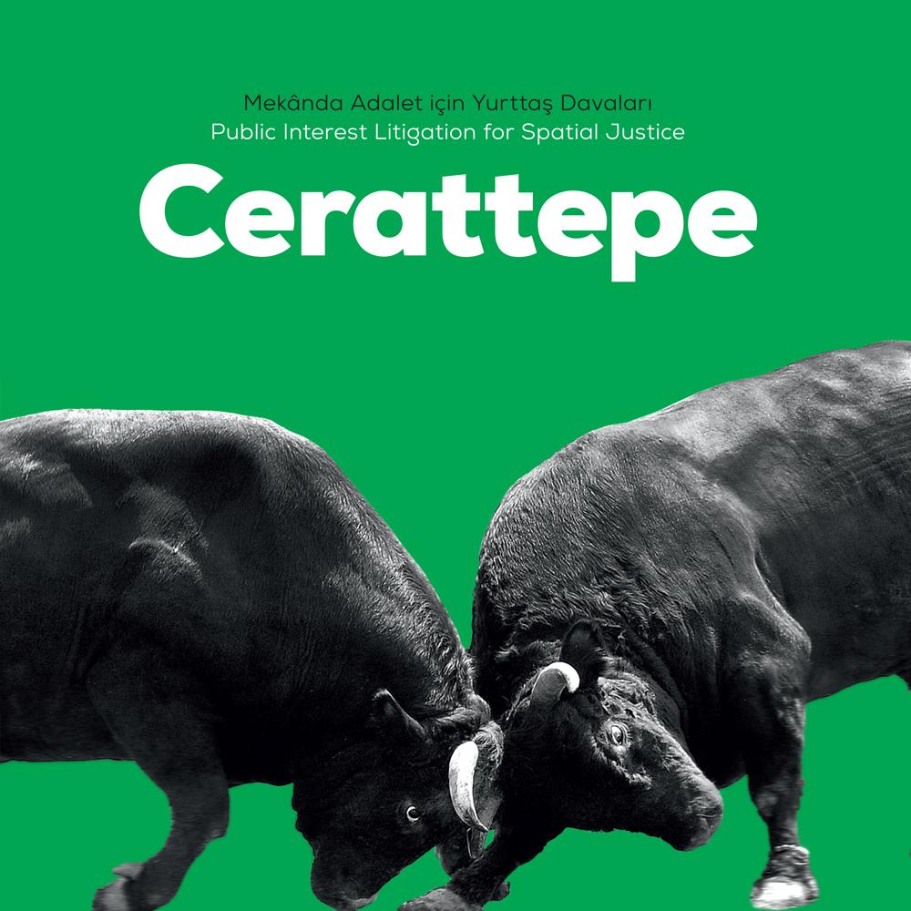 Cerattepe kitabı kapağı, iki boğa, kafa kafaya, yeşil düz zemin üzerinde